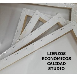 Lienzo -3D 30x50cm STUDIO